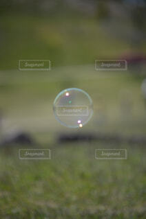 シャボン玉の写真・画像素材[2090465]