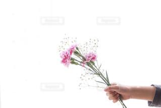 花を持っている人の写真・画像素材[1847423]