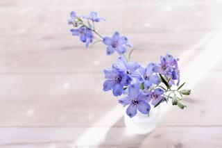 花の写真・画像素材[2067059]