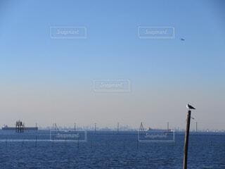 江川海岸の海中電柱の写真・画像素材[1725026]