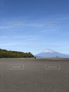 三保の松原から富士山を臨むの写真・画像素材[1664232]