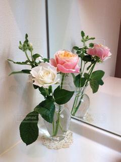 花がある日常の幸せの写真・画像素材[1664279]