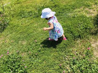 芝生を歩くの写真・画像素材[1671860]