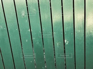 実の柵の写真・画像素材[1675781]