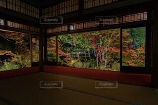 南禅寺天授庵の写真・画像素材[1691296]