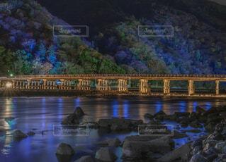 嵐山花灯路の写真・画像素材[1692467]