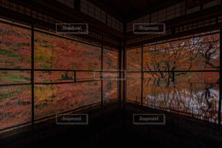 瑠璃光院の秋の写真・画像素材[1692487]