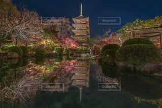 東寺ライトアップの写真・画像素材[1693045]