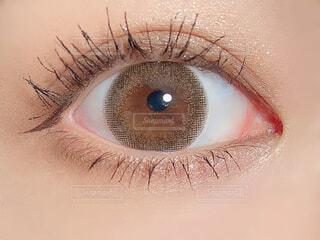 目のアップの写真・画像素材[3140706]