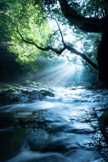 流れと光芒の写真・画像素材[1670028]
