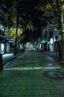 夜の並木坂の写真・画像素材[1689717]