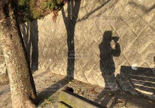 コーヒーを飲んでる人の影の写真・画像素材[1693151]
