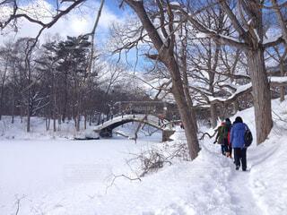 雪に覆われた斜面をスキーに乗る男の写真・画像素材[1717993]