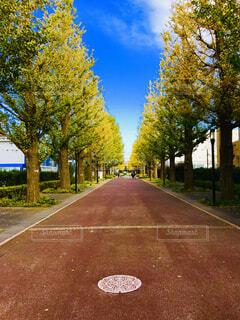 道の端にサインの写真・画像素材[1670511]