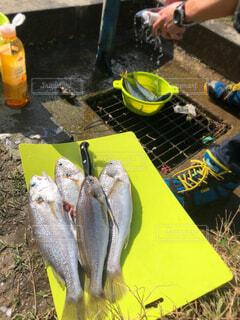 バーベキューにされるのを待つ魚の写真・画像素材[1671862]