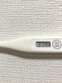 37.4度の体温計の写真・画像素材[3998236]