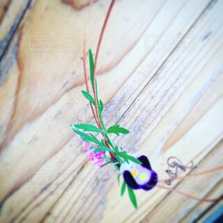 花飾りの写真・画像素材[1676742]