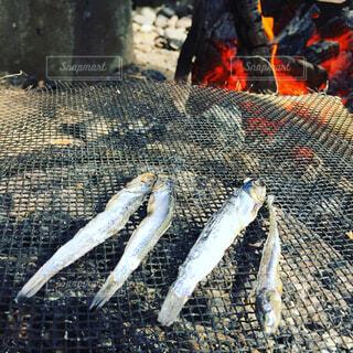 お魚を七輪での写真・画像素材[1735473]