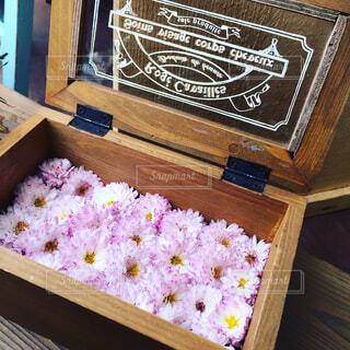 flower boxの写真・画像素材[1735502]
