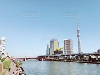 水の体に架かる橋の写真・画像素材[4805738]