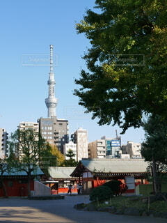 街の通りの眺めの写真・画像素材[4805739]
