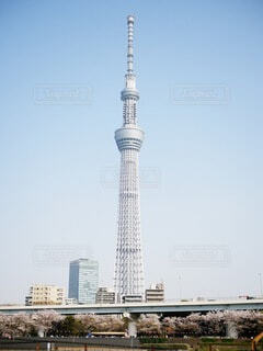東京スカイツリーを背景に、空の背景を持つ大きな高い塔の写真・画像素材[4805769]