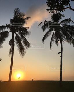 ビーチに沈む夕陽の写真・画像素材[1681877]