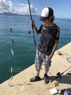 泳がせ釣り用のアジ確保の写真・画像素材[1682210]
