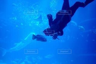 水中のサンタクロースの写真・画像素材[3982083]