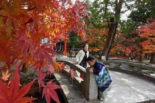 上賀茂神社で七五三♪の写真・画像素材[1684743]