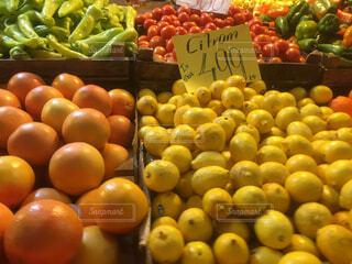 カラフルお野菜の写真・画像素材[1684586]