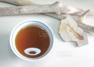 ほうじ茶と化石と流木の写真・画像素材[4815624]
