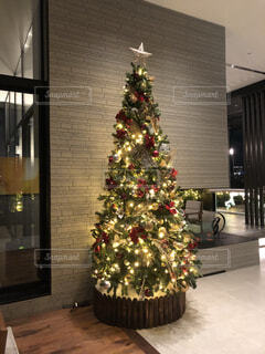 クリスマスツリーの写真・画像素材[1687292]