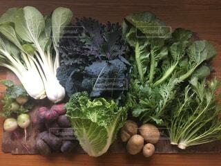 2018年12月季節のお野菜セット⑥の写真・画像素材[1687684]