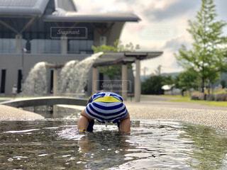 水の子の写真・画像素材[2367492]