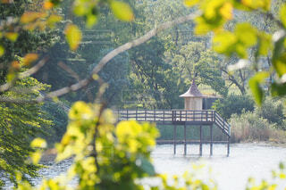 湖の上の小屋の写真・画像素材[1705466]