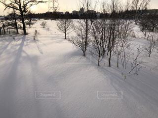 雪景色、ビルが見える市内でもこんな所があります。の写真・画像素材[4130451]