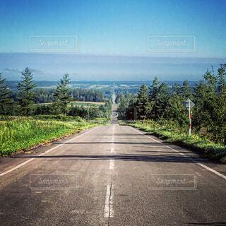 天国へ続く道の写真・画像素材[1688819]
