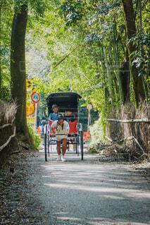 竹林を抜ける人力車の写真・画像素材[1689163]