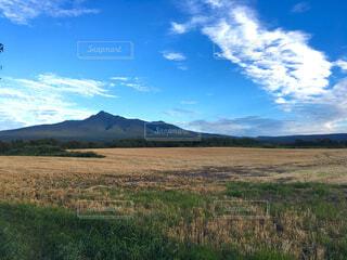 北海道の広大な自然 山と草原の写真・画像素材[1689480]