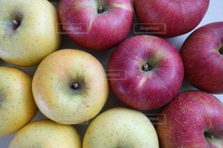 りんご紅白の写真・画像素材[242083]
