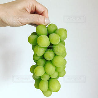 果物を持った手の写真・画像素材[746276]