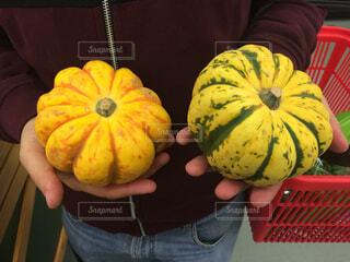かぼちゃの写真・画像素材[1696979]