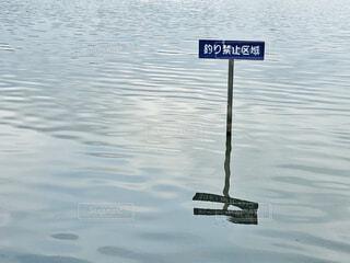 釣り禁止区域の写真・画像素材[1793062]