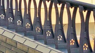 陸橋の写真・画像素材[1836238]