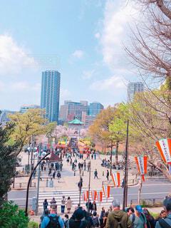 上野の森の写真・画像素材[1991429]