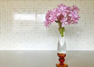 花の写真・画像素材[2178947]