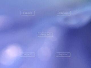 パープルの世界の写真・画像素材[2242837]