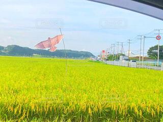 車窓からの写真・画像素材[2414073]