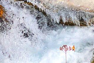 冬の渓谷の写真・画像素材[2936988]